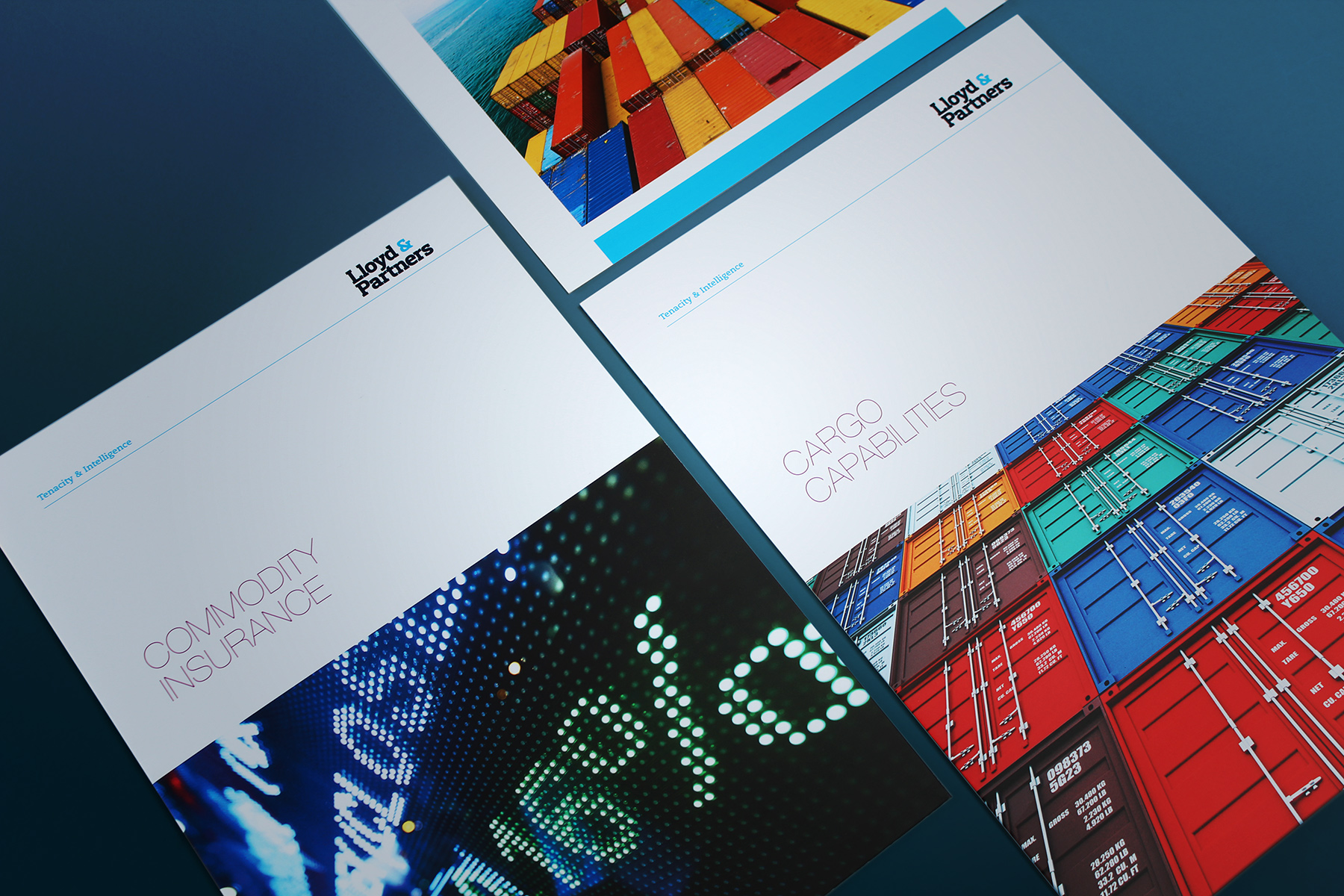 Large imagery is used throughout the brand's printed communications, which also utilises lots of white space to hold both type and the brand mark.